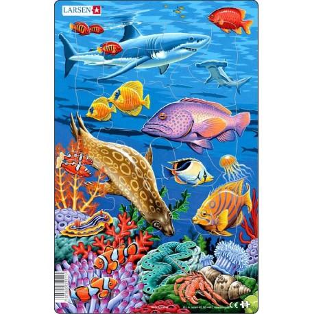 "Пазл ""Коралловые рифы акула"" Larsen (Норвегия)"
