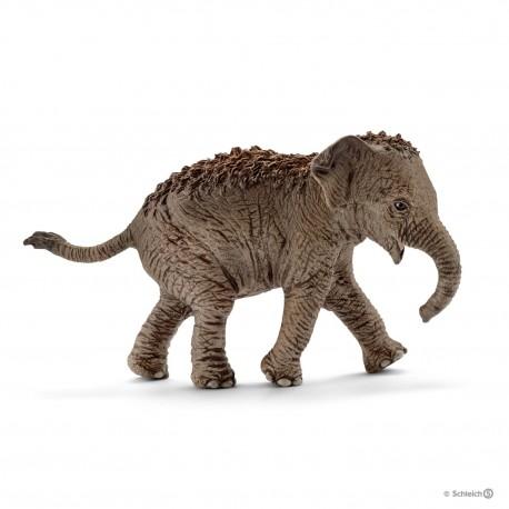 Азиатский слон, детеныш Schleich 14755