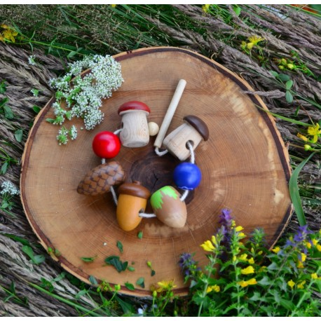 Шнуровка белочкины припасы  Леснушки (Россия)