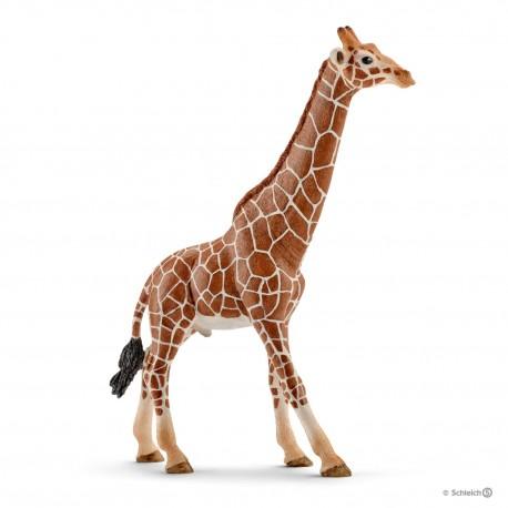Жираф самец Schleich (Германия) 14749