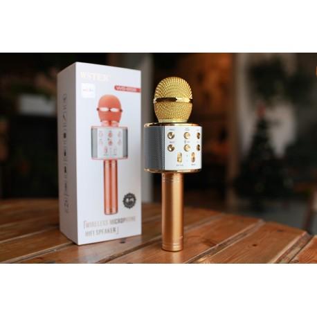 Оригинальный караоке-микрофон WSTER (золотой) ws-858